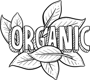 bigstock-Organic-food-sketch-42350398